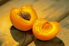 oil apricot